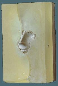 Premio Sofia Amendolea 2005 resina e marmo su legno